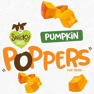 Treat Planet Snicky Snaks Pumpkin Poppers