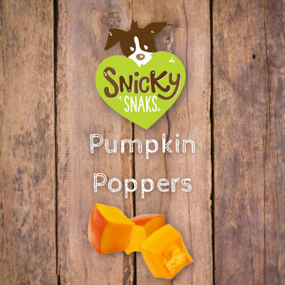 Snicky Snaks Pumpkin Poppers Bulk
